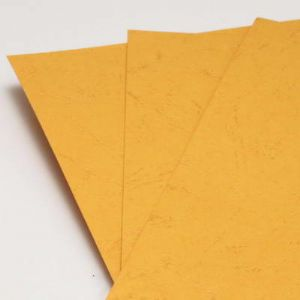 Card blanks, Light orange, 29.8cm x 21.2cm, 4 Card blanks, 230 gsm, (PMA0032)